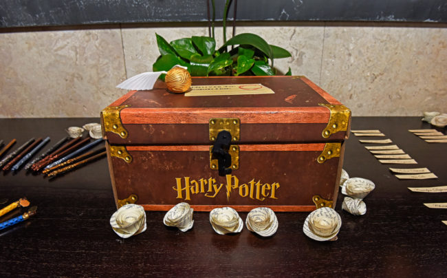 Harry Potter Hawaii wedding